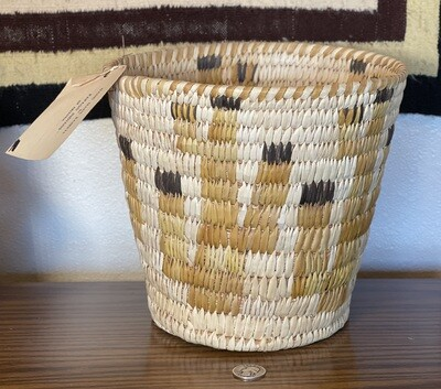 Papago Coil Basket Saguaro  Pictorial Tohono O'odham Native American