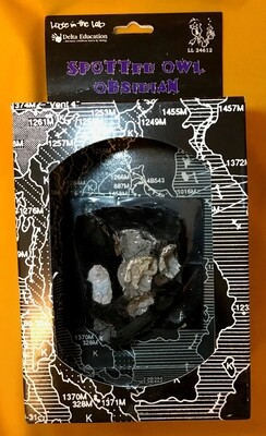 Spotted Owl Obsidian