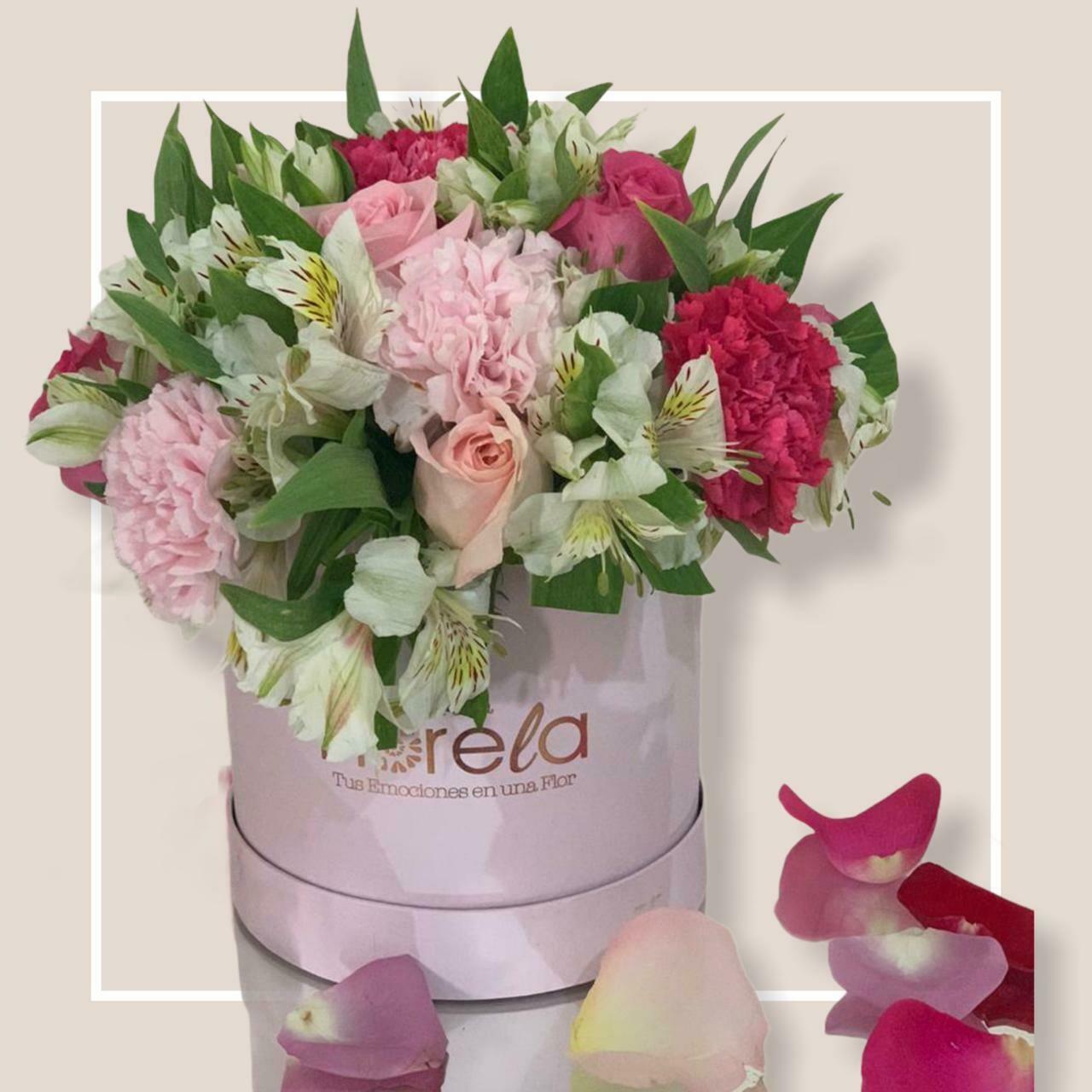 Arreglo de media docena de rosas con Claveles - Chloe