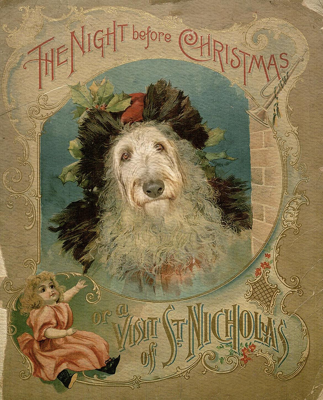 MOBILE PHONE EDIT: Christmas Pet Portrait
