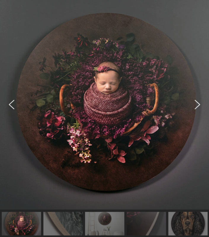 Newborn Session products: 20
