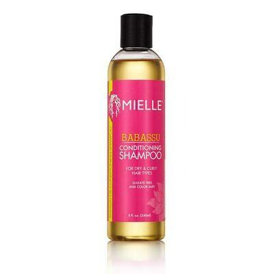 Mielle Shampoo