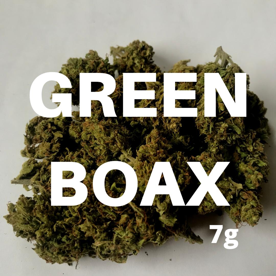Green Boax Flower