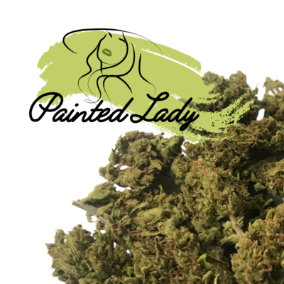 CBD Flower — Painted Lady