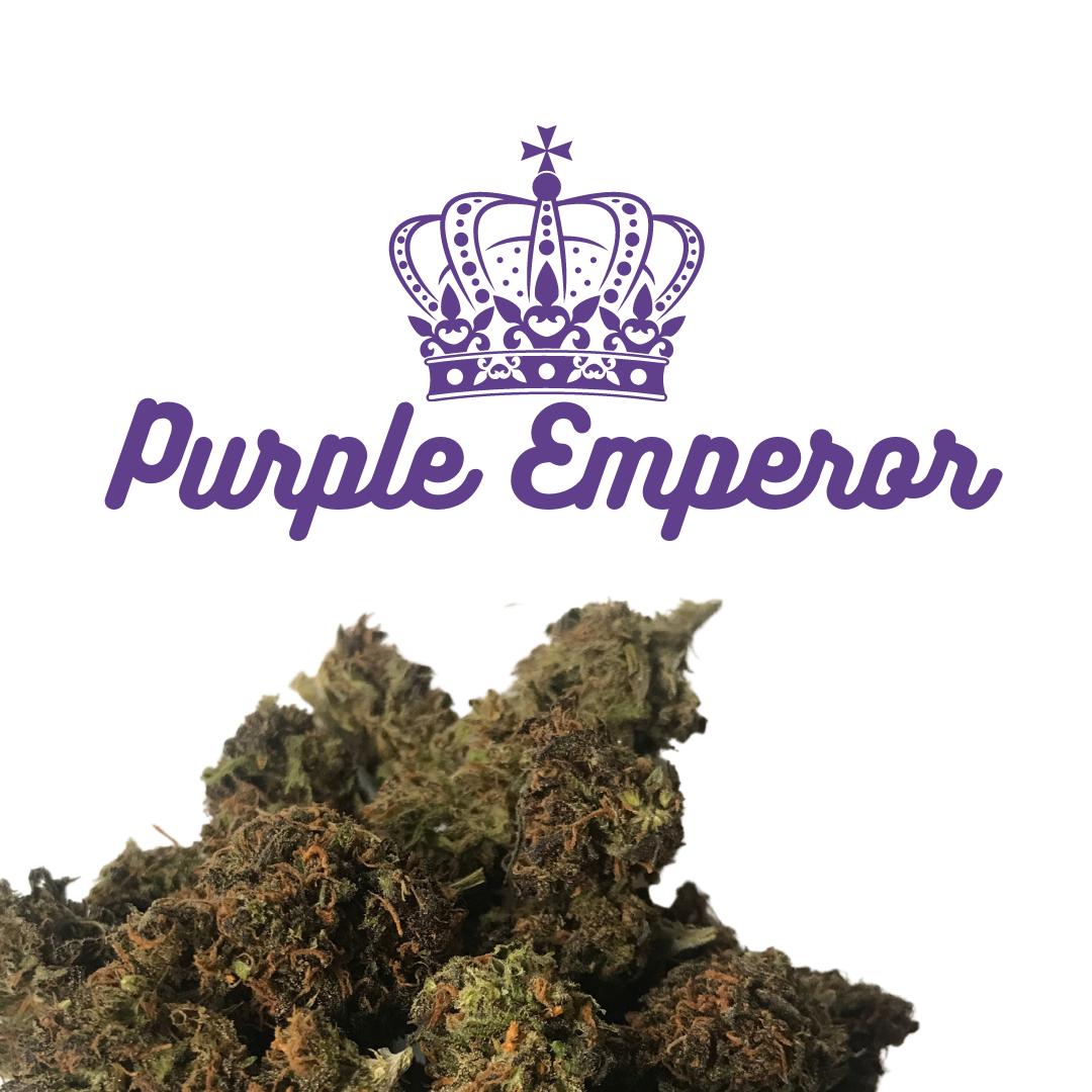 CBD Flower — Purple Emperor