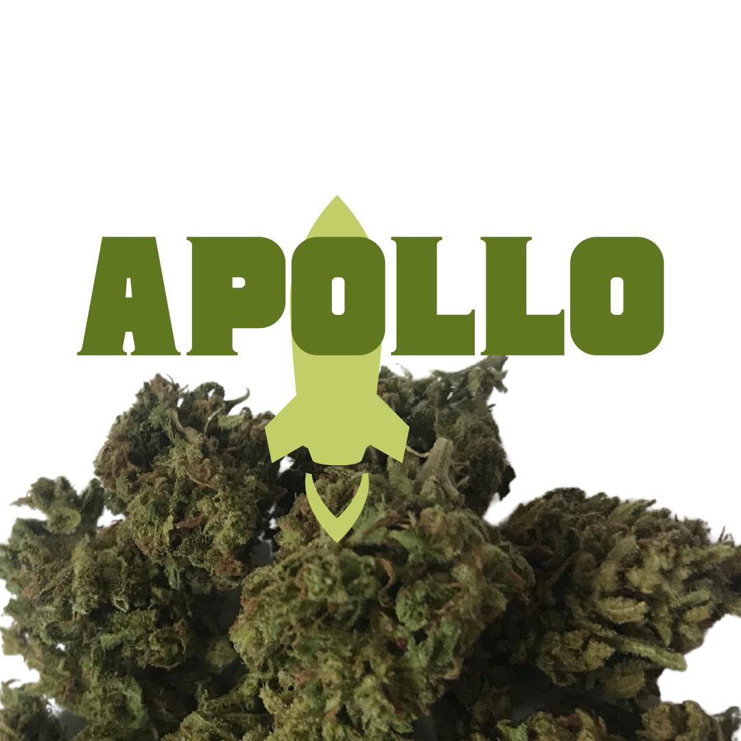 CBD Flower — Apollo