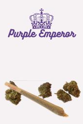 CBD Pre-Roll — Purple Emperor