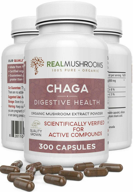 Chaga Extract 300 Capsules Real Mushrooms
