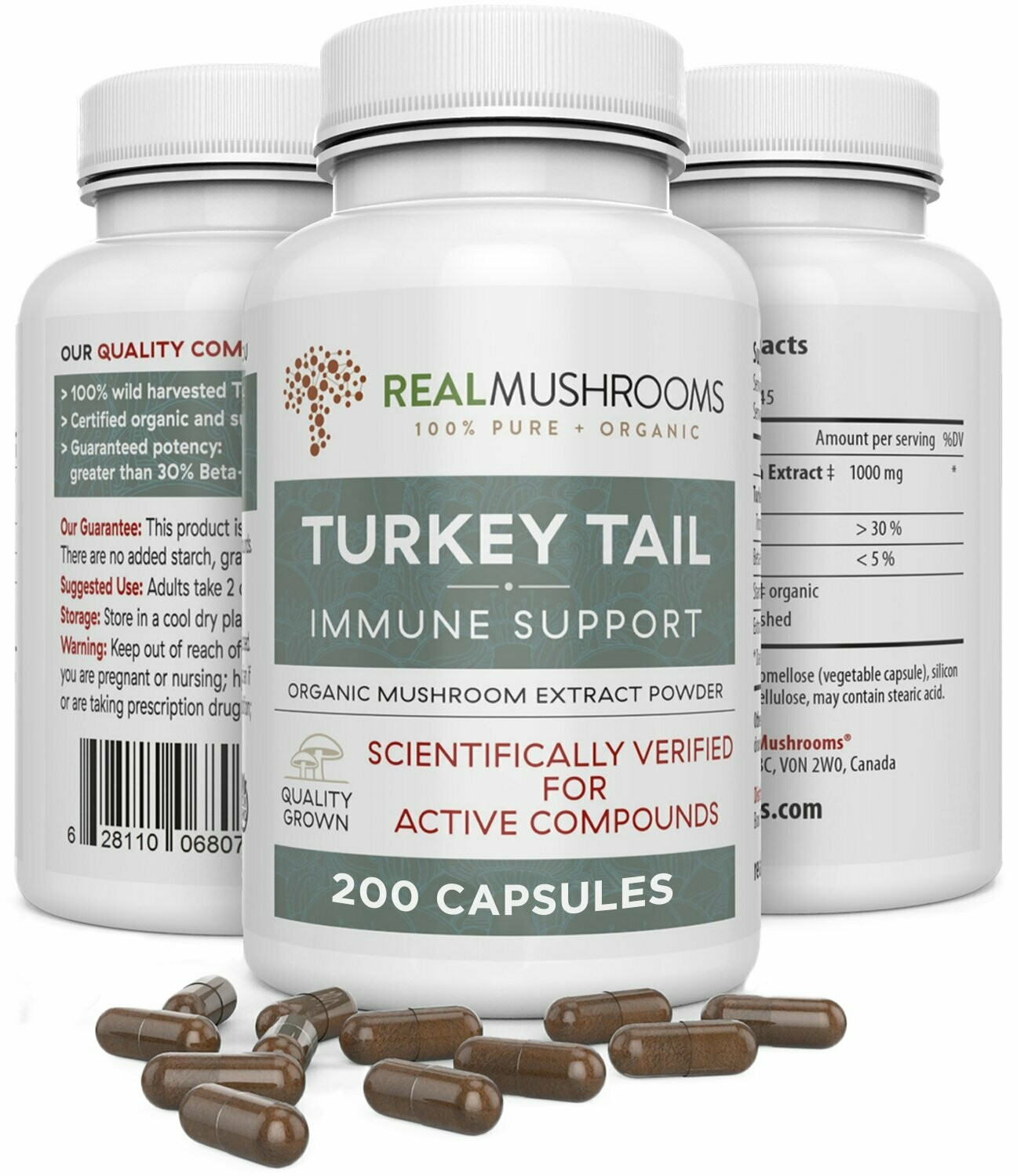 Turkey Tail Extract 200 Capsules Real Mushrooms