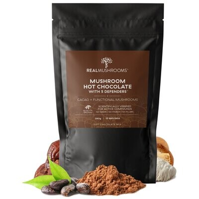 Mushroom Hot Chocolate Mix 500 mg  240 gr Real Mushrooms