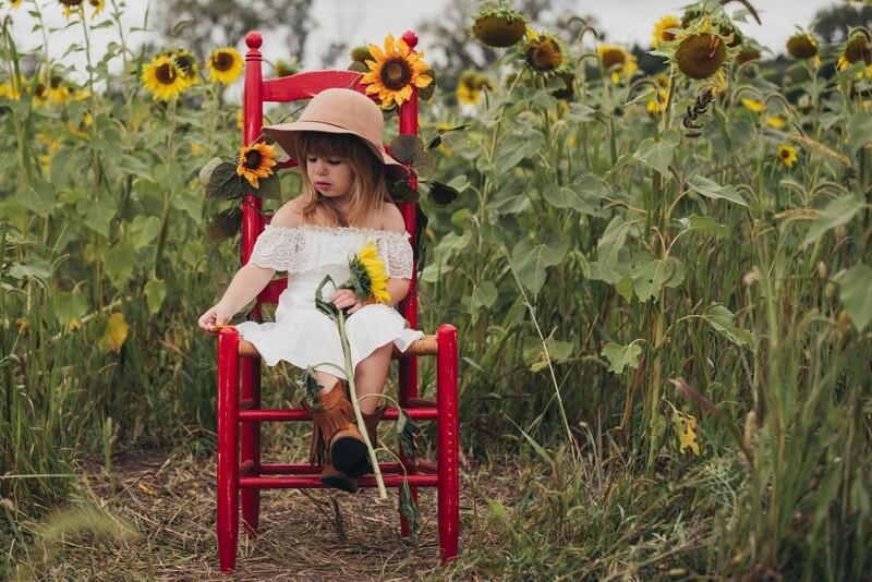 Sunflower Minis - 9/4/20