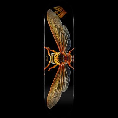 "Powell - FLIGHT Deck Potter Wasp 8.0"""