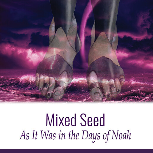 Mixed Seed: As It Was In The Days of Noah