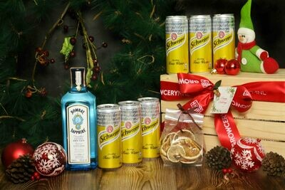 Bombay Gin Set