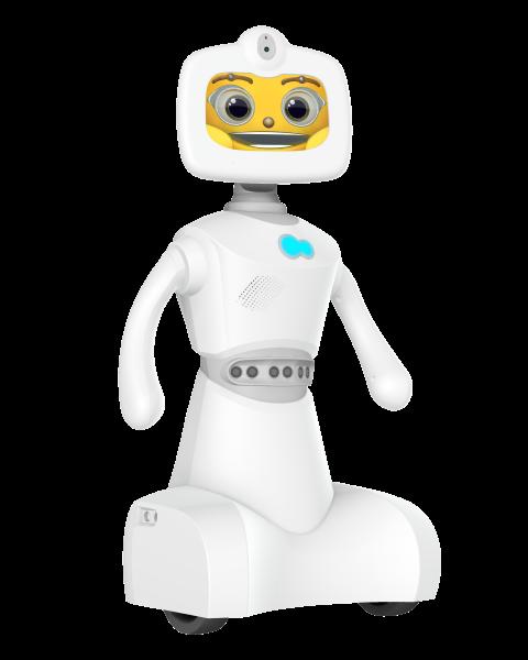 Home service robot