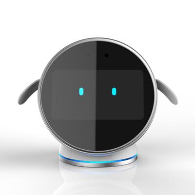 Cognitive Training Robot