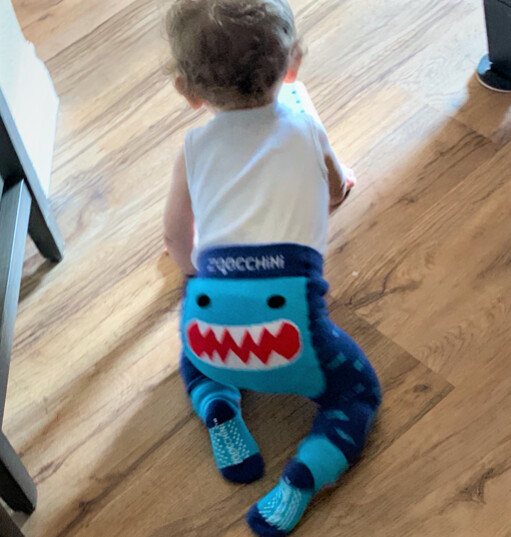 ZooCChini Sherman Shark Legging & Sock Set