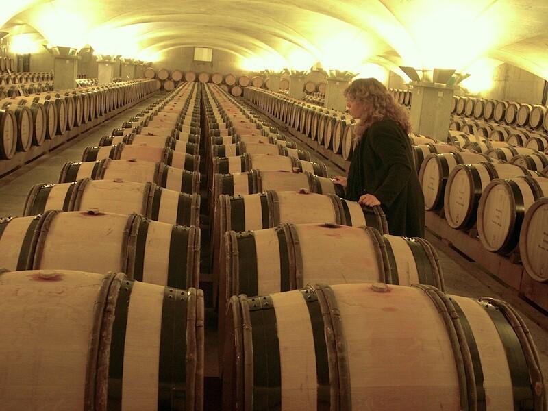 CONFERENCE (environ 2h) : Petites et grande, histoires des vins de Beaune (sous réserve de disponibilité à la date demandée)