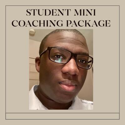 Student Mini Semester Coaching Package
