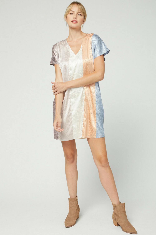 Grace Leopard Latte Stripe Dress