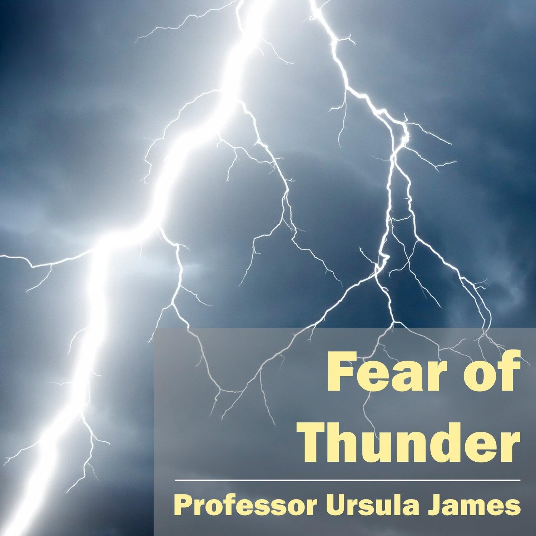 Fear of Thunder MP3