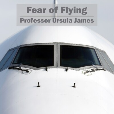 Fear of Flying MP3