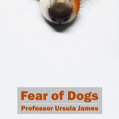 Fear of Dogs MP3