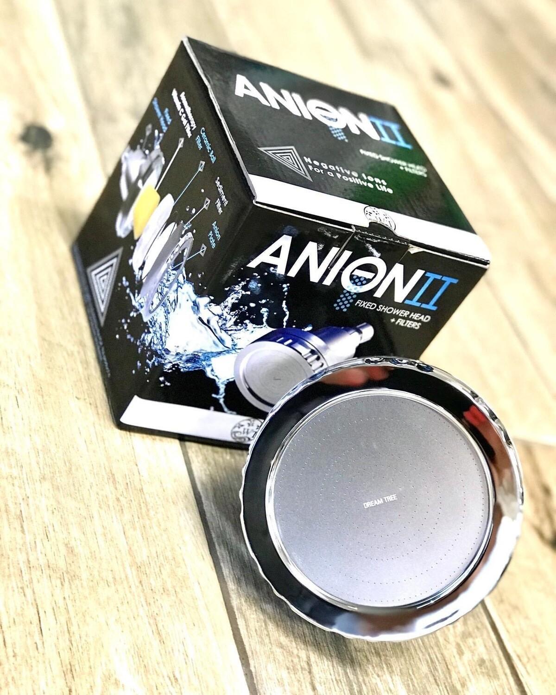Anion II Fixed Showerhead