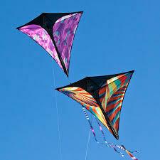 Prism Kites Stowaway Diamond Single Line Kite PURPLE HAZE