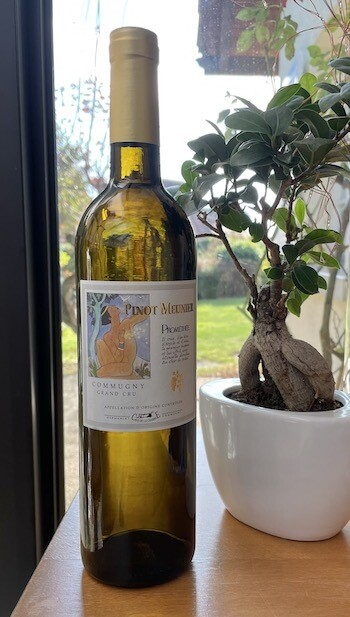 Le Pinot Meunier Prométhée - Blanc - 75cl