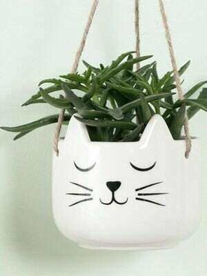 Cat's Whiskers Stoneware Hanging Planter