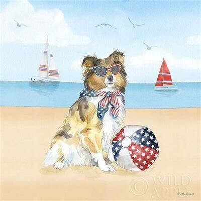 Set of 2 Kitchen Towels: Patriotic Collie with Beach Ball