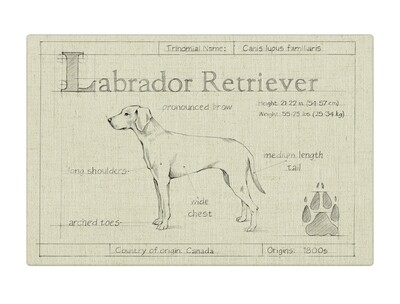 Custom Dog Blueprint Canvas Wrapped Art Made in NC