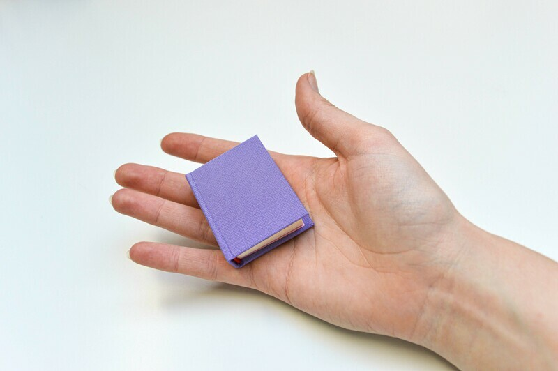 Miniature Books - Purple & Pink
