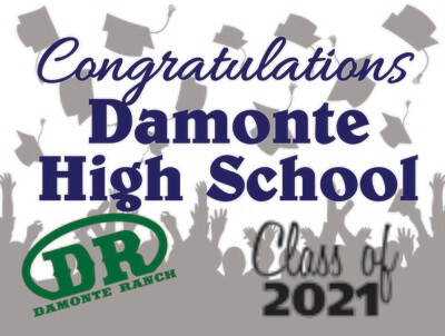 Class of 2021 Damonte Ranch Senior Graduate Yard Sign - Ready in 10-14 Days