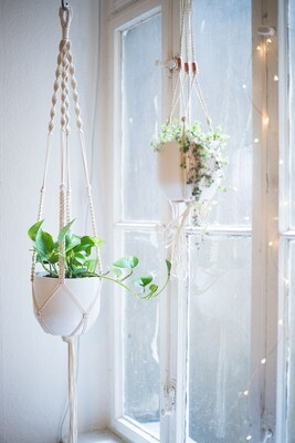 Macrame plant hanger tutorial - pdf printable instructions only