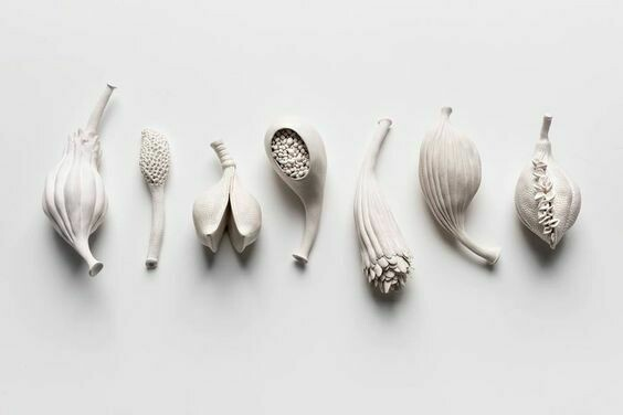 Hand Built Seed Pods, 23rd May 10am-12pm