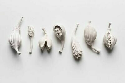 Hand Built Seed Pods, 25th April 10am-12pm