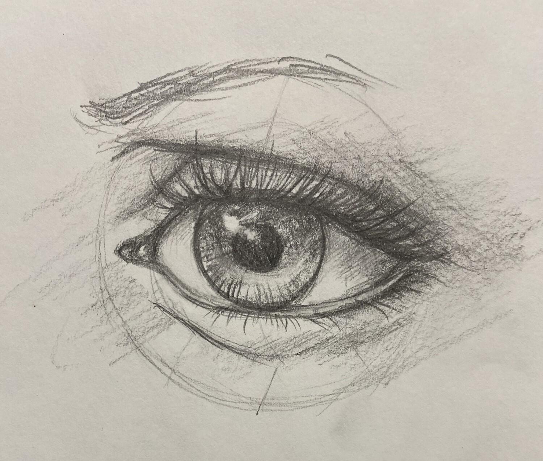 Anatomy Drawing - Friday September 17th 6.30-8