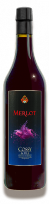 Saint-Saphorin Grand Cru Merlot 2 ans de barrique 2016 70 cl