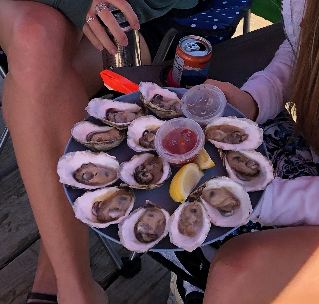 Oysters  Local CSA/Pick-up Portland, Raymond, Yarmouth and Kennebunk