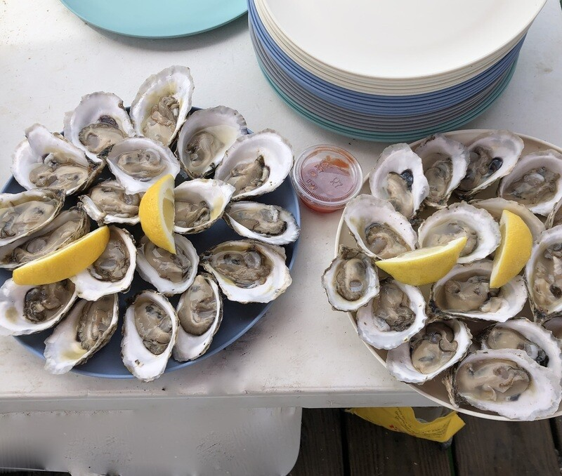 Deluxe Gift Package -  50 Oysters, our favorite shucking knife, a Kraken and two Moshier Island Royal hoodies
