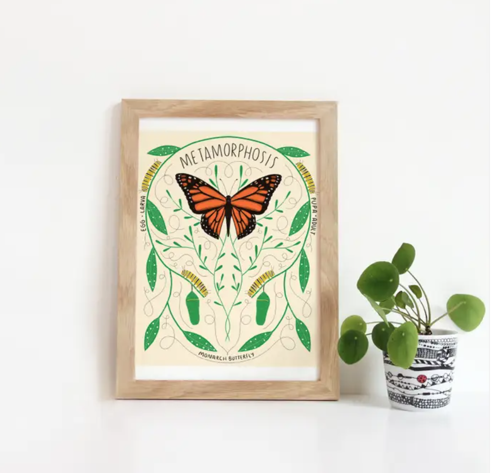 Metamorphosis Print- Gingiber