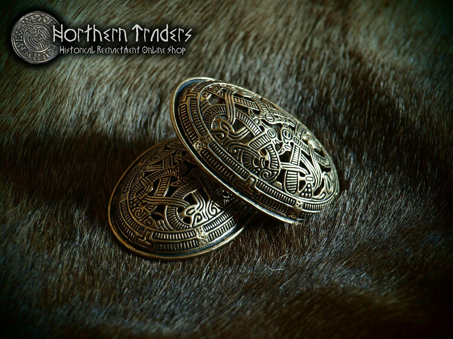 Viking Turtle Brooches from Morberg