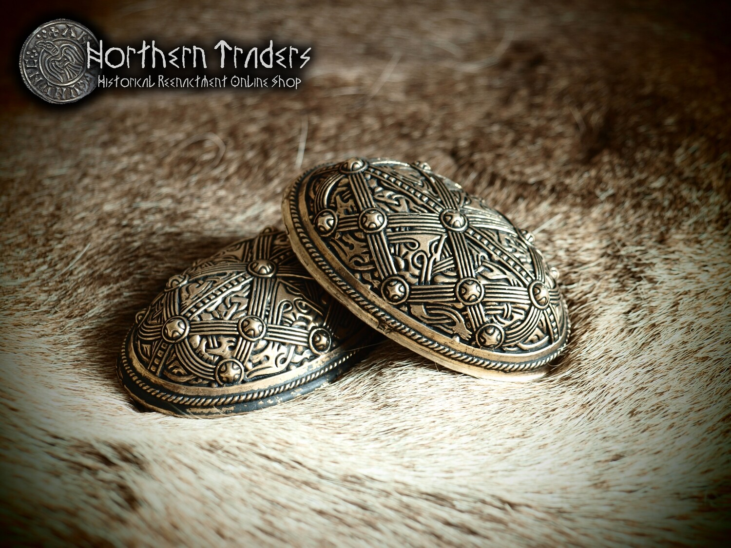 Viking Turtle Brooches from Gjerstad