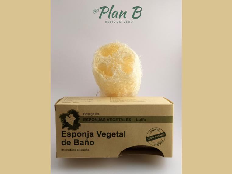 Esponja Vegetal Mediana - Diámetro: 6,5cm