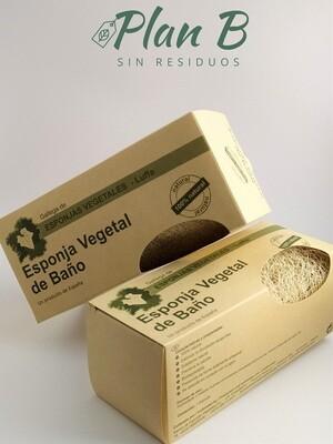 Esponja Vegetal Grande  ( 7,5  X  15 CM )