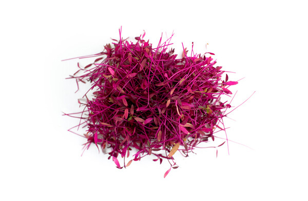 Red Amaranth 200g