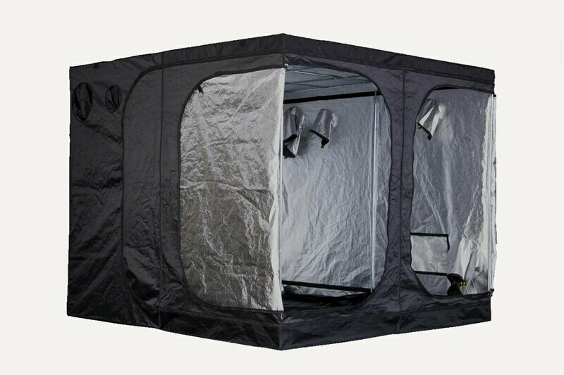 Mammoth Pro 240 Tent