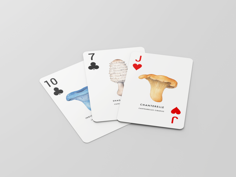 The North American mushrooms playing cards game